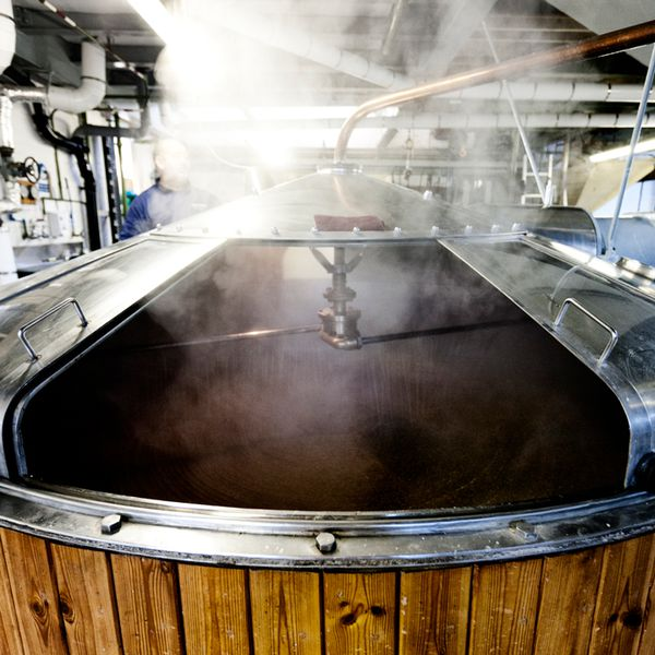 Fermenting grains to become beer