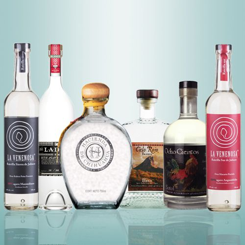 a collection of agave spirit bottles