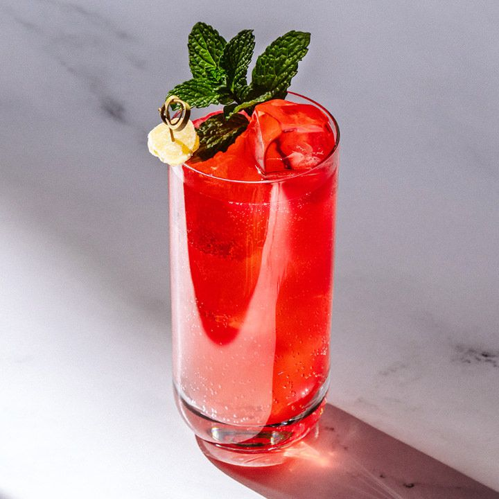 bright-red Dead Sea Mule cocktail in a Collins glass, garnished with a mint sprig and candied ginger on a skewer