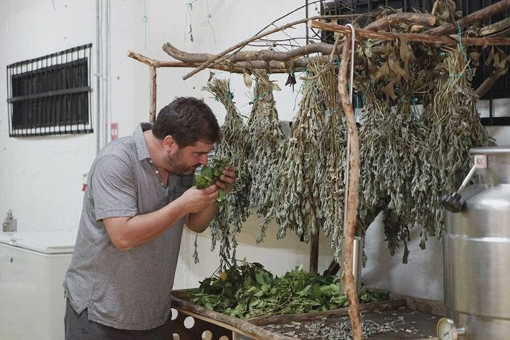 A man smelling drying herbs hanging from a wooden structure