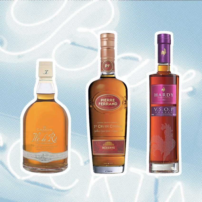 Best Cognacs to Drink