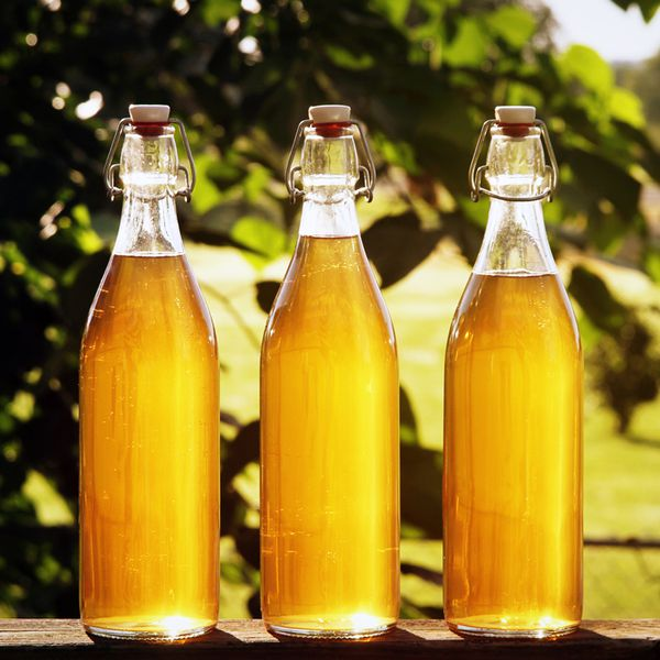 Three bottles of golden mead are showcased in see-through glass bottles. They sit outdoors in bright sunlight, with an out-of-focus tree branch in the background