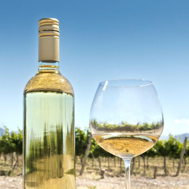 Wine glass at vineyard