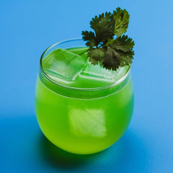 A round rocks glass is set against a solid blue backdrop. The drink within is vivid green, with a few ice cubs and a sprig of cilantro.