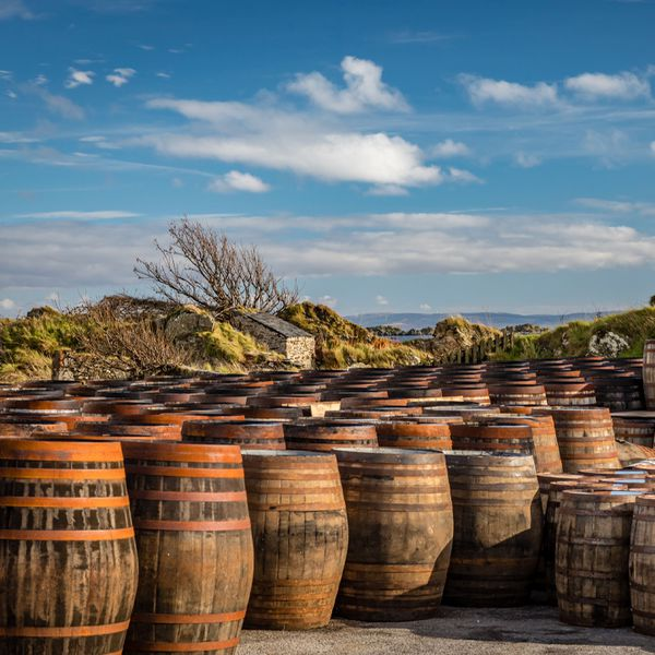 a group of scotch whisky barrels outdoors in Scotland