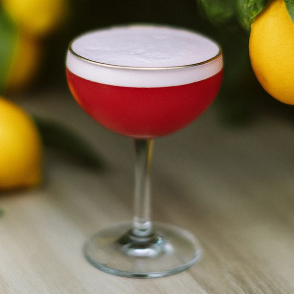 deep-red Novara Sour cocktail in a coupe, with a white halo of frothy egg white, served on a wooden surface beside lemons
