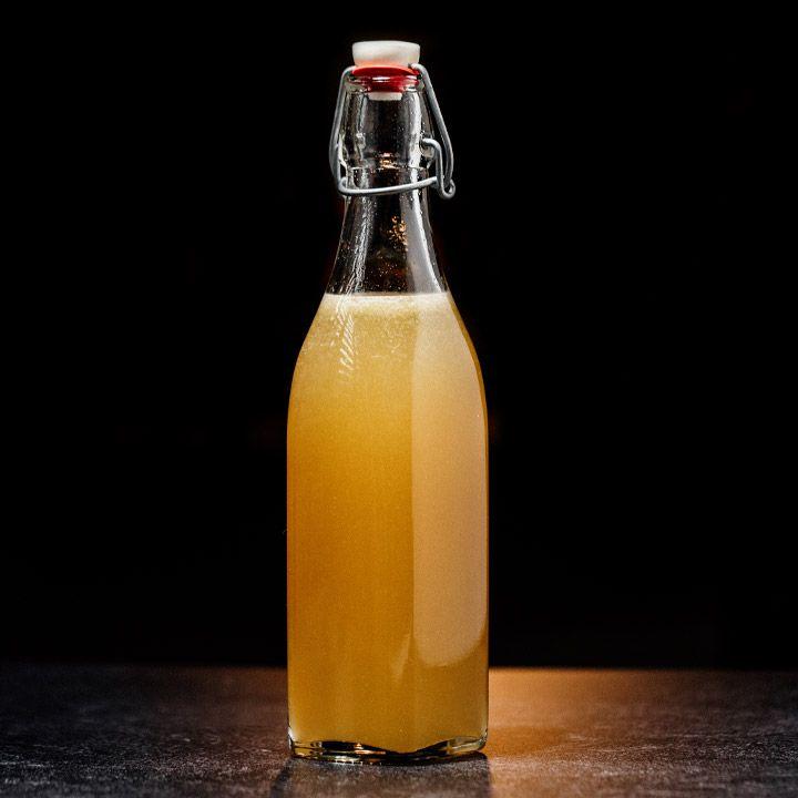 Lacto-Fermented Apple Sherbet