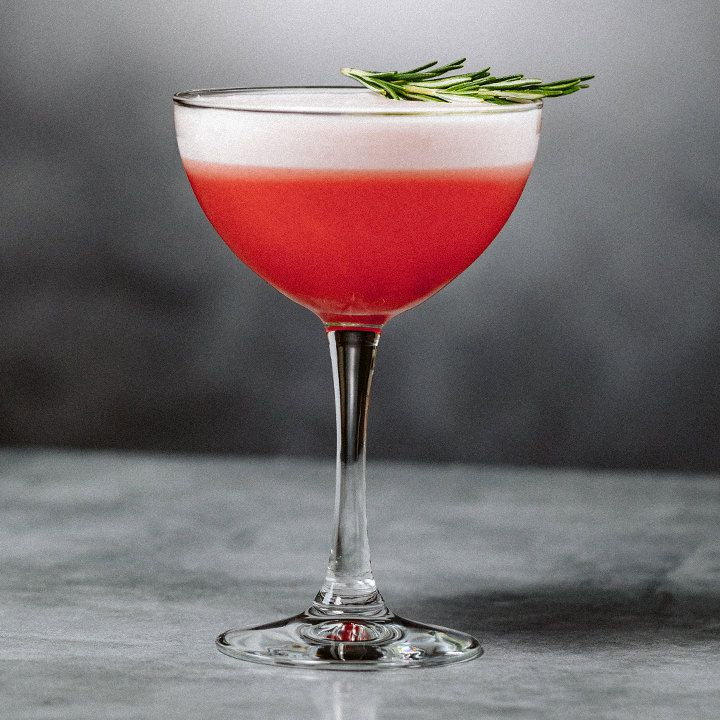 Winter Sour cocktail in a cocktail glass, layered with red at bottom and a white frothy top, garnished with a rosemary sprig