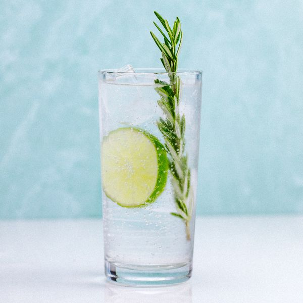 CBD Gin & Tonic in a highball glass, garnished with a lime wheel and rosemary sprig