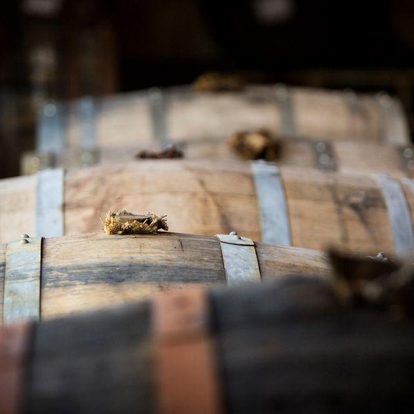 WhistlePig barrels