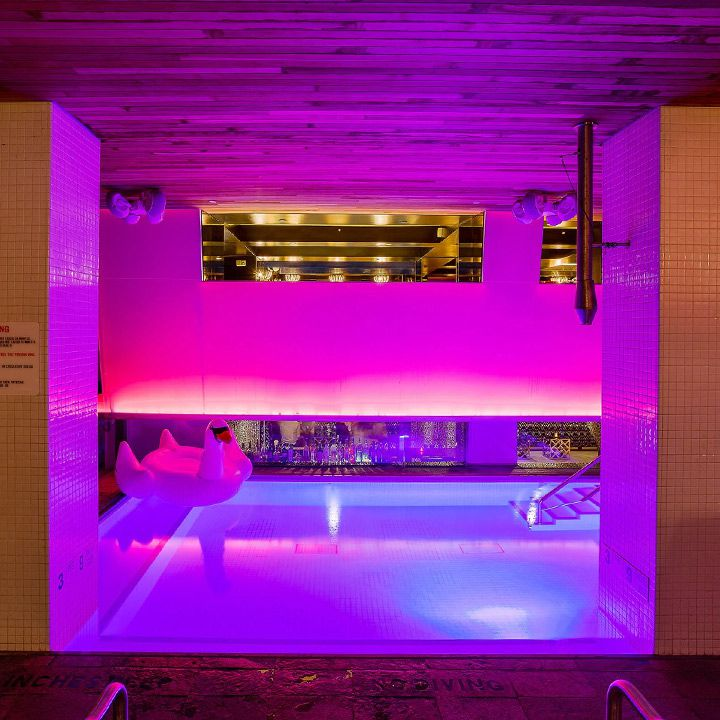 Room Mate Grace swim-up bar in NYC. A moody mix of pink and purple light suffuses the room. A floaty swan sits in the pool