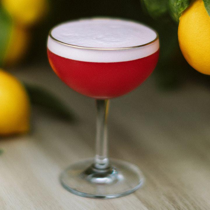 Novara Sour cocktail