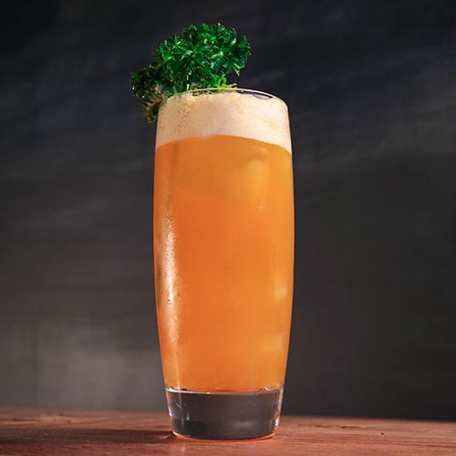 A tall, curved highball glass holds a carrot-hued cocktail on the rocks. Its top is garnished with a generous sprig of carrot leaves, and the background is a hazy gray.