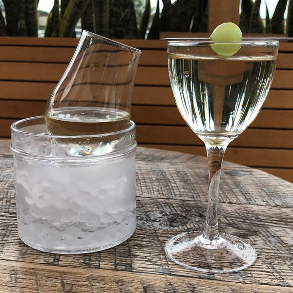 On the right, an elegant Nick & Nora glass holds a crystal clear drink, with a skewered melon ball resting on the mouth. The drink strikingly inverts the background image of plants. To its left, a partially filled mini-carafe rests on a bed of pebble ice.