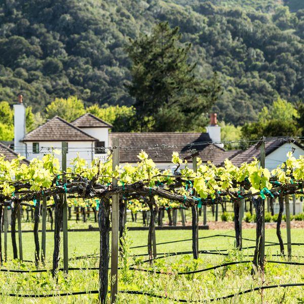 Folktale Winery in Monterey, Calif.