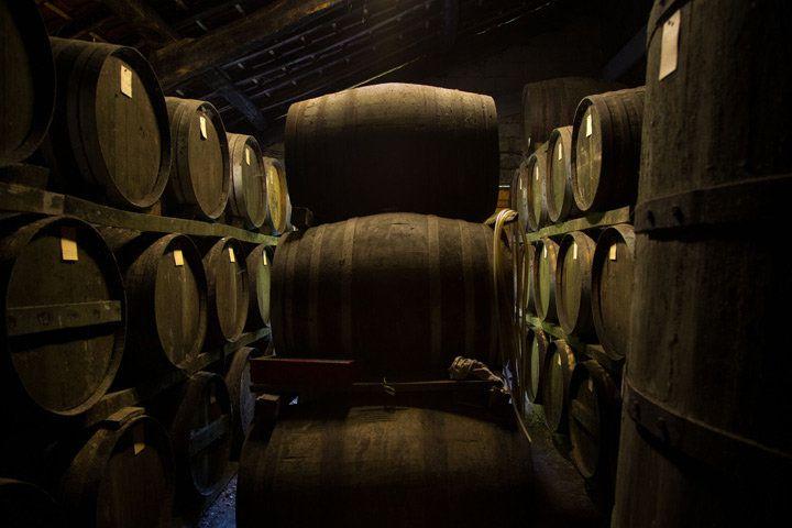 A cave full of Armagnac barrels