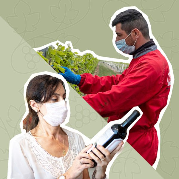 people in masks with wine