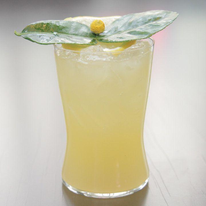 verbena cocktail