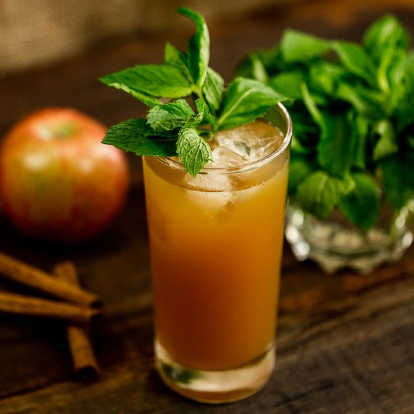 Stone Fence cocktail in a collins glass with a mint sprig garnish, set beside an apple and cinnamon sticks