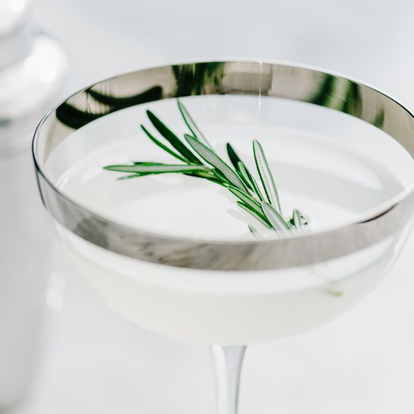 A sprig of rosemary drifts in a clear cocktail. The elegant cocktail coupe that holds it is rimmed with silver, which hazily reflects the drink and garnish.