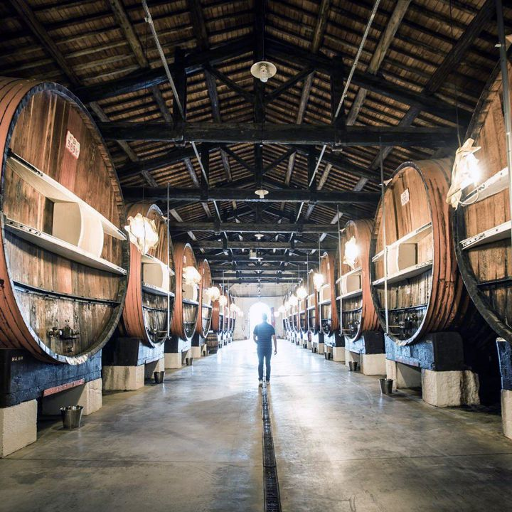 Maison Noilly Prat in Marseillan, Hérault, France, with a room full of enormous wood barrels