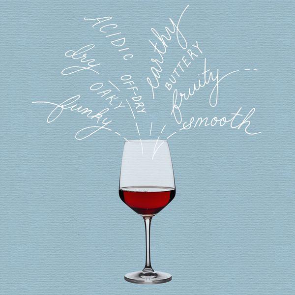 Wine terms illustration