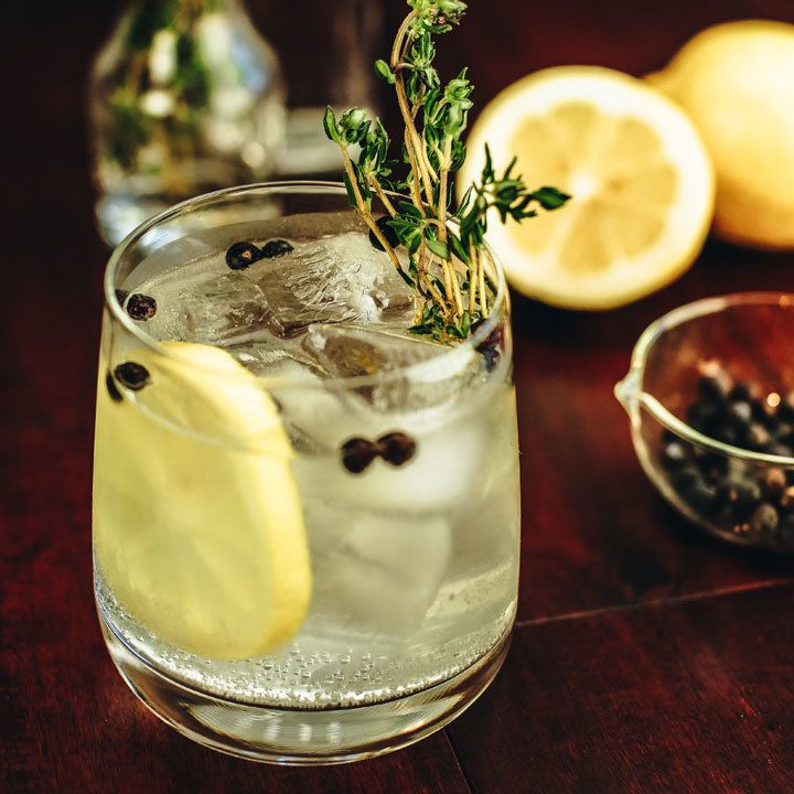 spanish gin & tonic cocktail