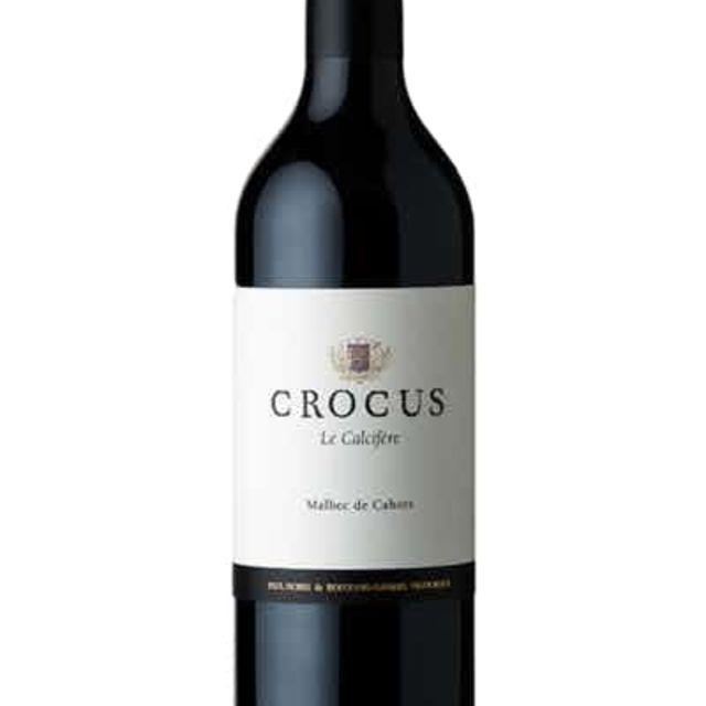 Crocus Le Calcifere