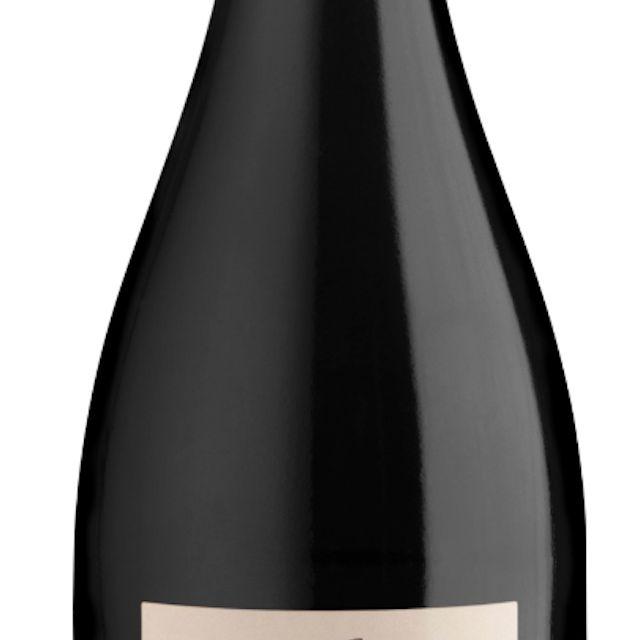 2016 Ritual Pinot Noir Casablanca Valley Chile