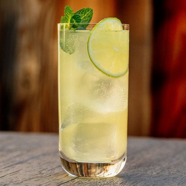 A tall highball glass with thin walls holds a light golden, bubbly drink. A number of large ice cubes, a wheel of lime and a sprig of mint finish the drink. The surface below is hard wood.