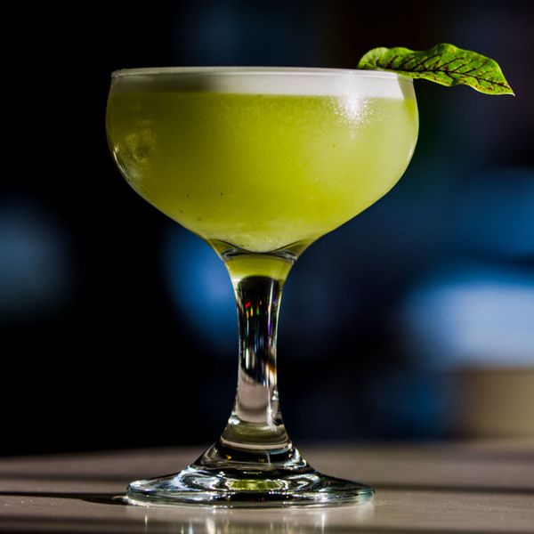 A dramatically lit coupe is set against a blue backdrop. The drink within is vividly green with a white foam head, and is garnished with a red-veined sorrel leaf.