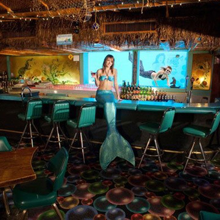 mermaid seated on the turquoise bar at Sip 'n Dip Lounge