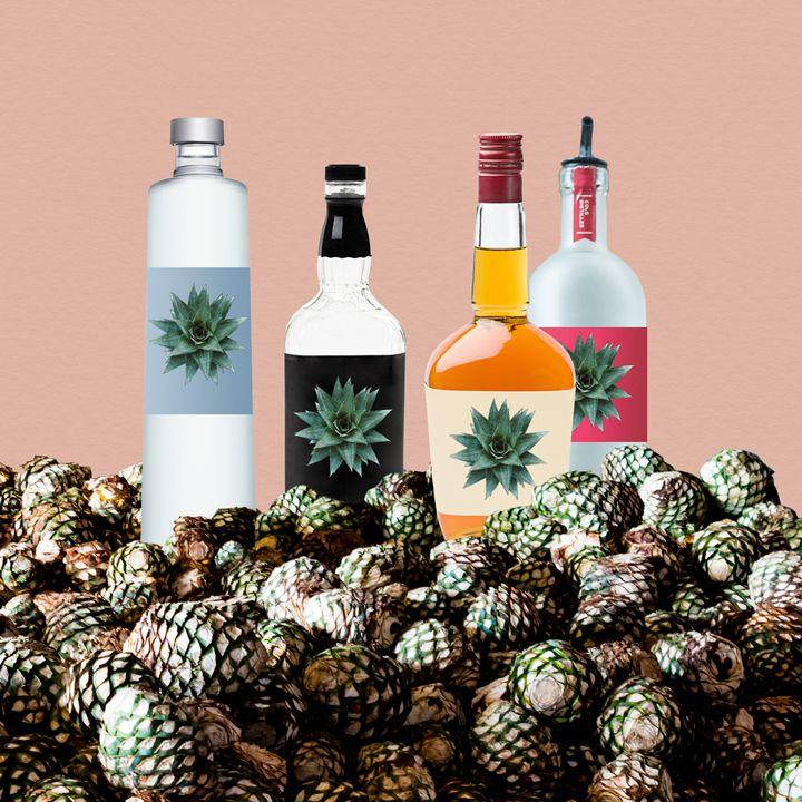 Spirit bottles with agave